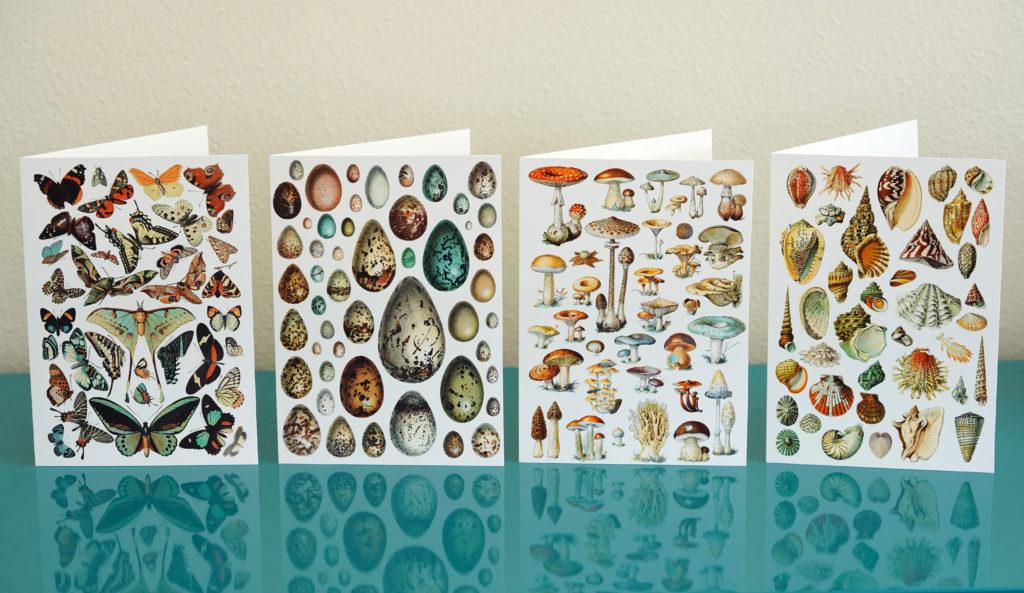 Vintage Nature cards at Plaid Frog Press