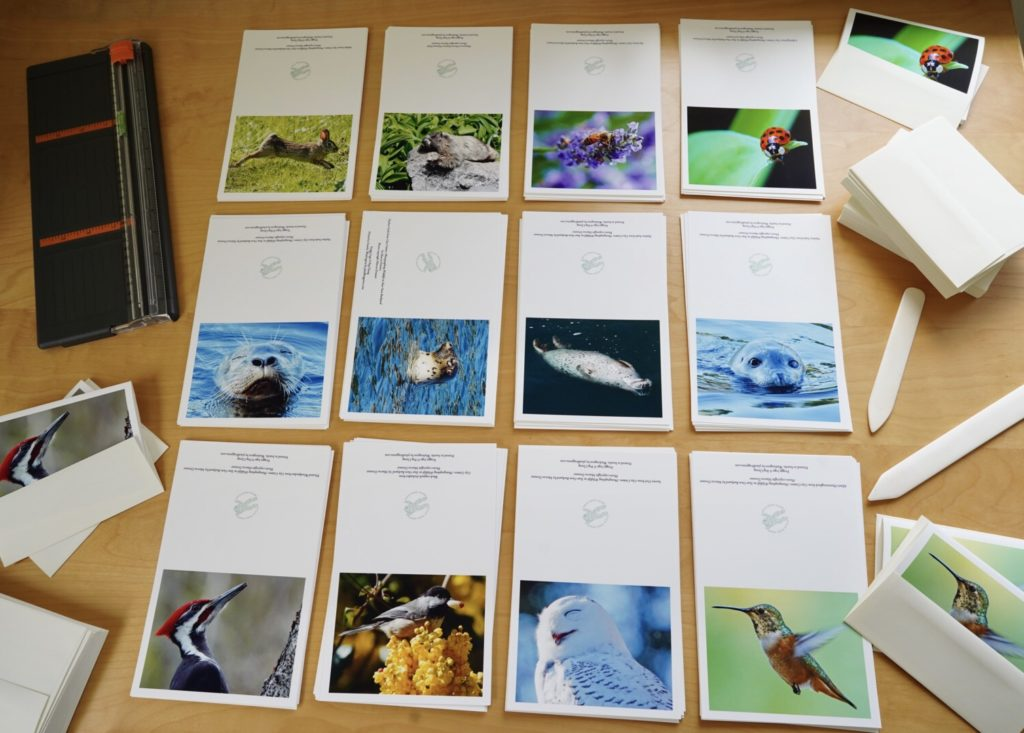 Making wildlife cards for Plaid Frog Press
